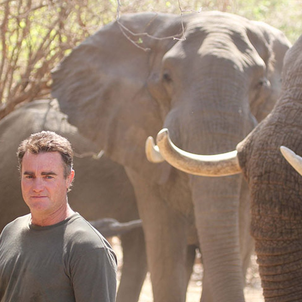 Nick Murray with elephants