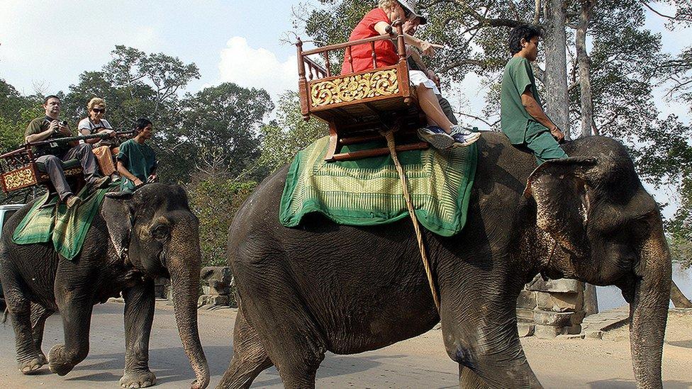 Jahanje slonova u Kambodži