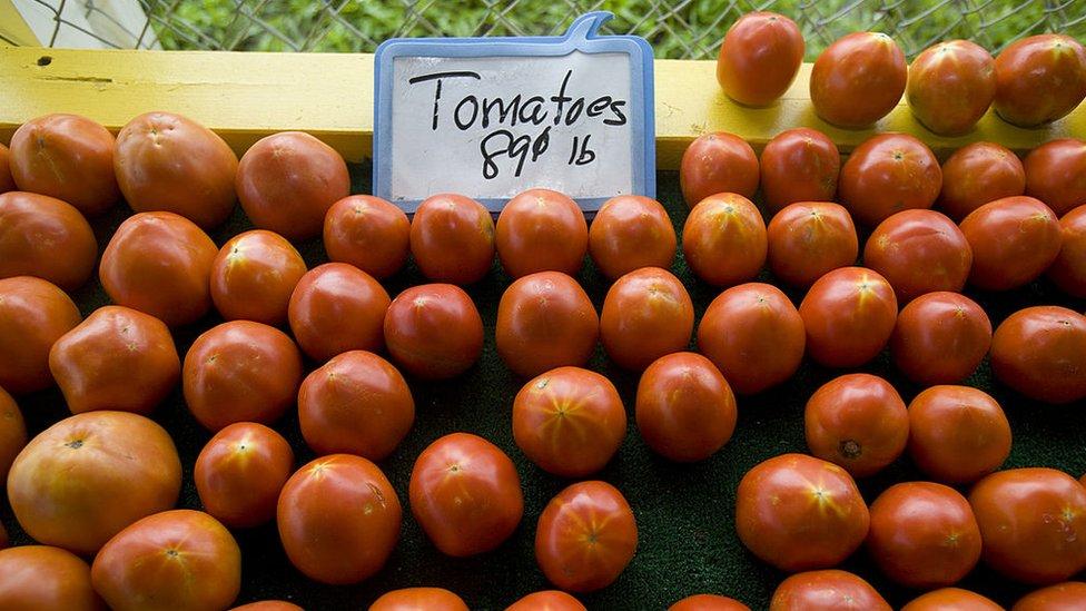 Organizaciones de importadores de tomates en Estados Unidos advierten que el precio de la hortaliza puede subir hasta un 85%.