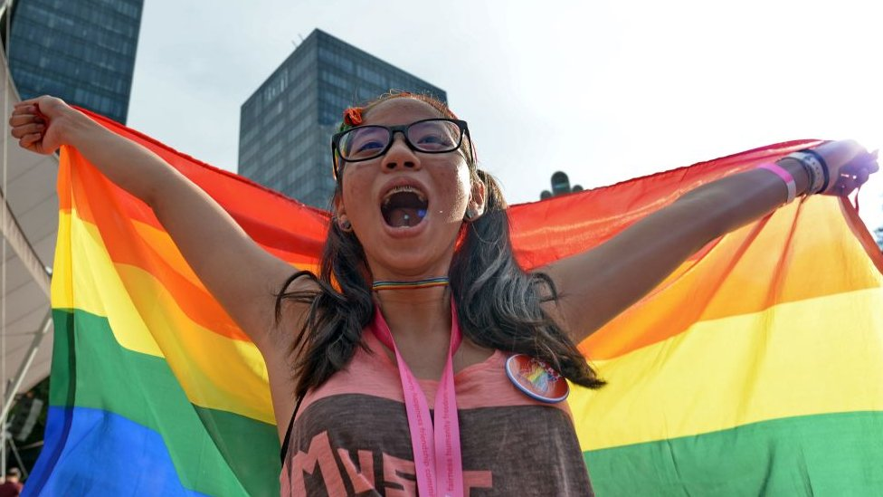 "A supporter attends the annual ""Pink Dot"" event in a public show of support for the LGBT community at Hong Lim Park in Singapore"