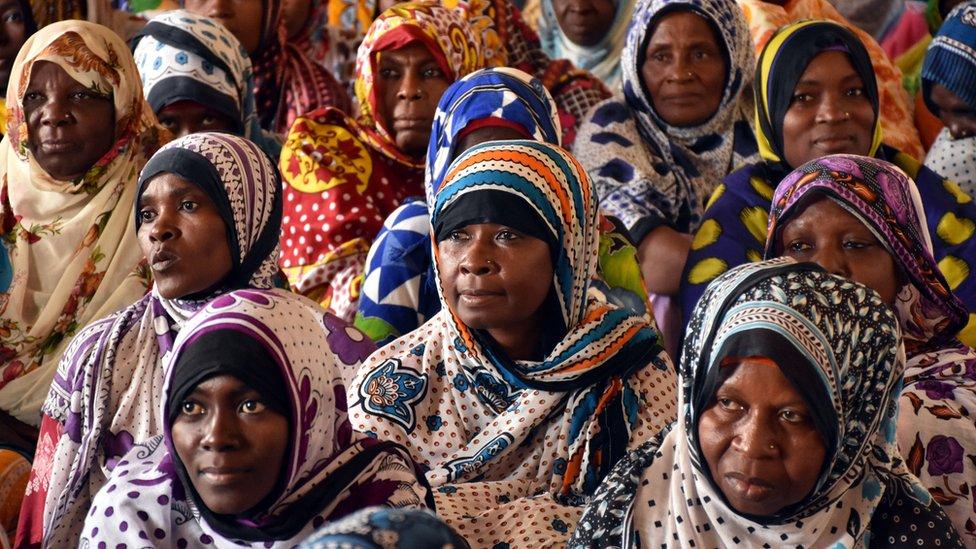 مجموعة نسا في جزيرة زنزبار بتنزانيا
