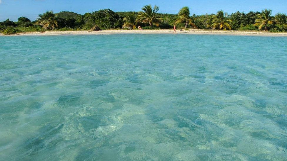 Aguas caribeñas en la playa de Vieques en Puerto Rico.