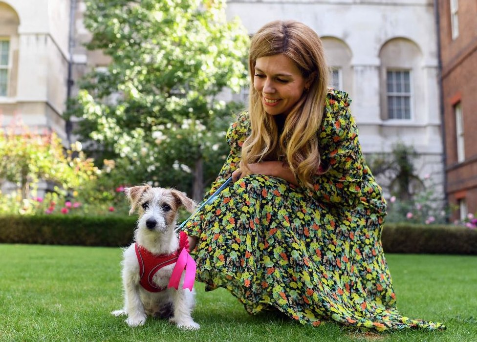 Carrie Symonds posted pictures with her new pet