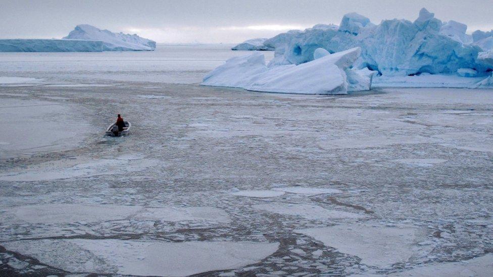 Sea ice in western Greenland