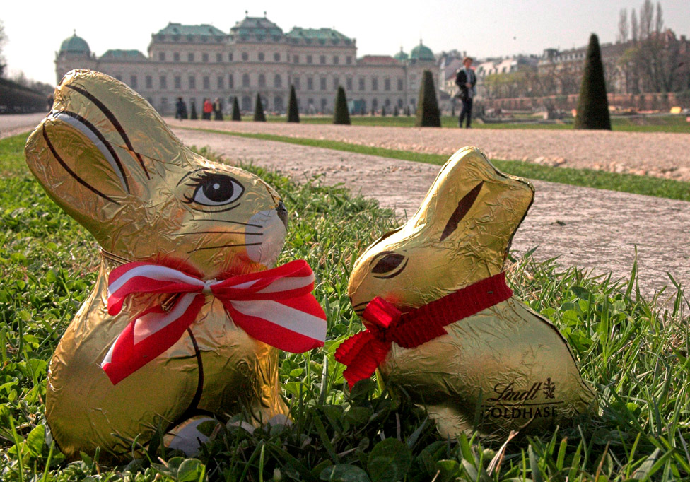 A Hauswirth and a Lindt rabbit