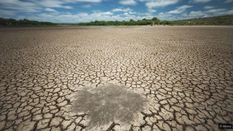 Predviđa se da će nestašica vode postati sve češća zbog klimatskih promena