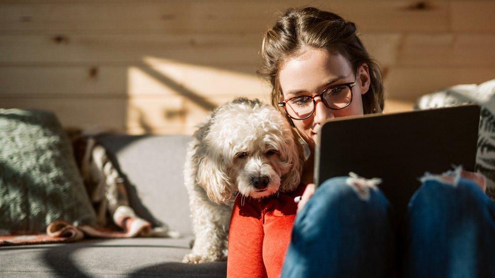 Una mujer con su perro y su laptop