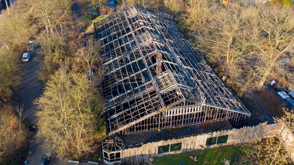 Gutted ape house, 1 Jan 20