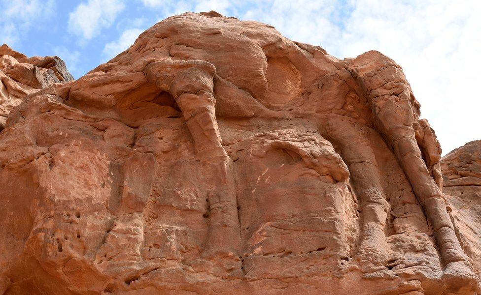 Velika skulptura kamile u Saudijskoj Arabiji