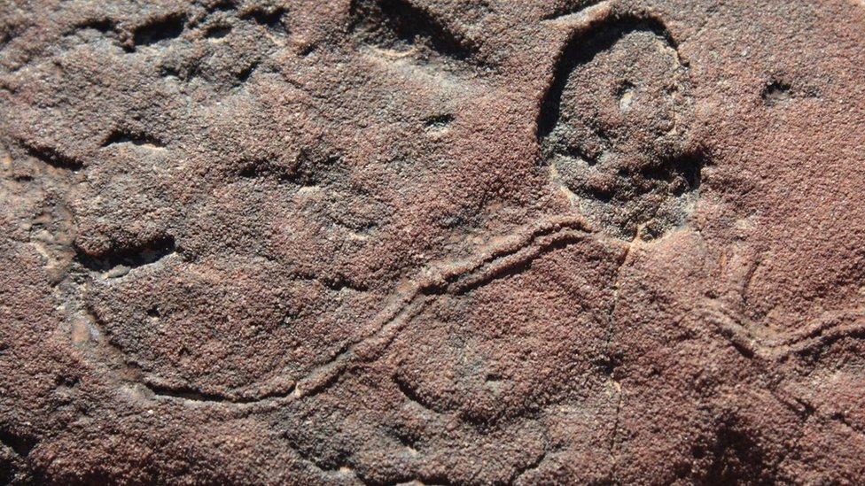 Muestra de la transición de los periodos Ediacárico y Cámbrico identificada por científicos.