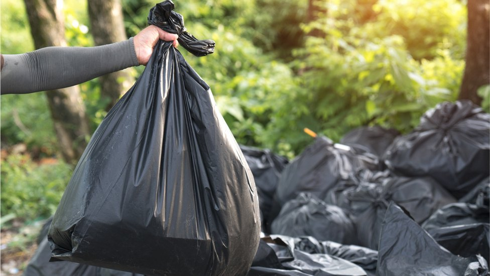 Monthly bin rounds for Denbighshire to boost recycling