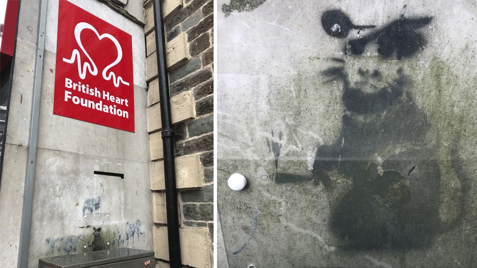 Did Banksy paint Llanelli rat on charity shop wall?