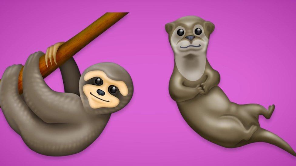 emojis oso perezoso y nutria