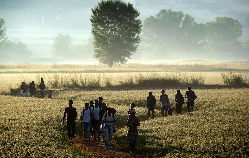 Migrants wandering through Greek field