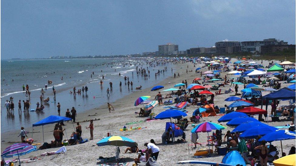 Coronavirus How Did Florida Get So Badly Hit By Covid 19 Bbc News