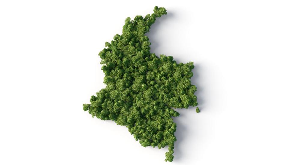 Mapa de Colombia hecho con arbustos