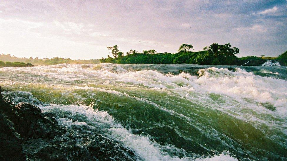 Ozero Viktoriя. Burunы u istoka Belogo Nila.