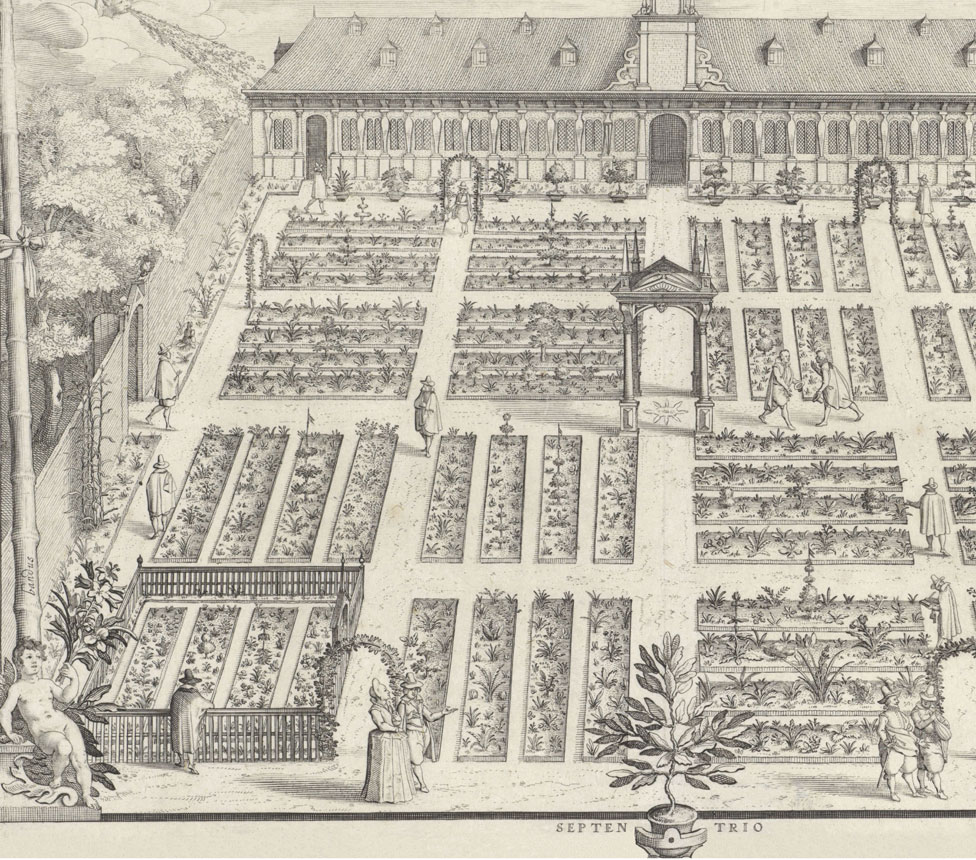 The Hortus Botanicus of Leiden University, The Netherlands, planted by Carolus Clusius