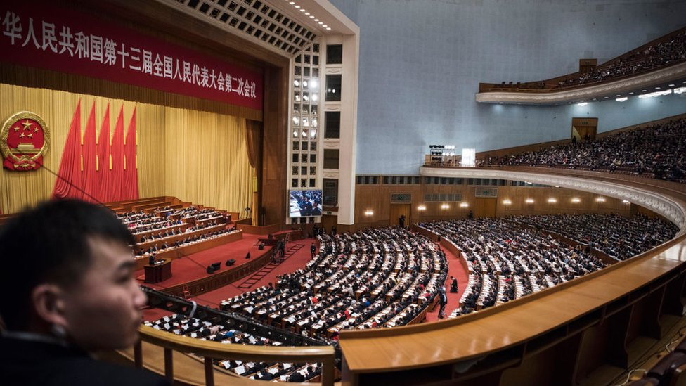 Narodna skupština Kine