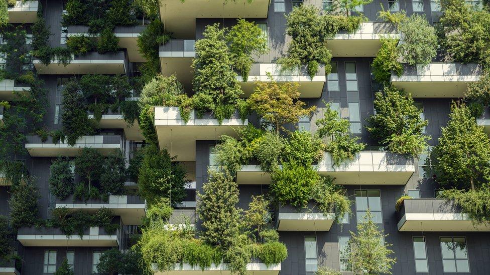 Jardines verticales.