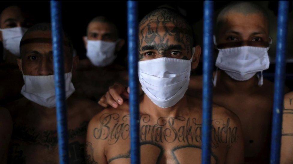 Miembros de pandillas