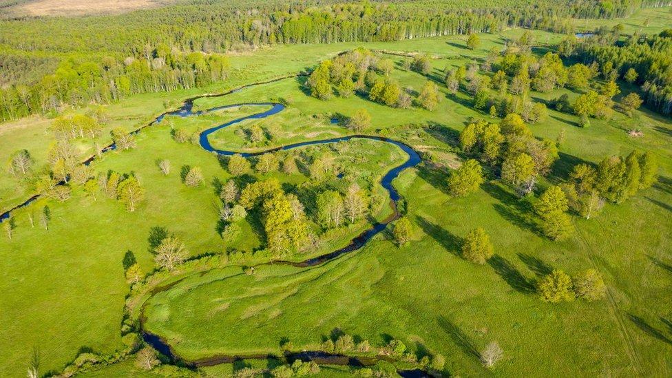 Parque Nacional de Soomaa visto desde el aire