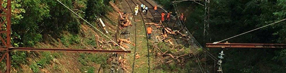 Trees on the line at Saint-Aunes (17 Aug)