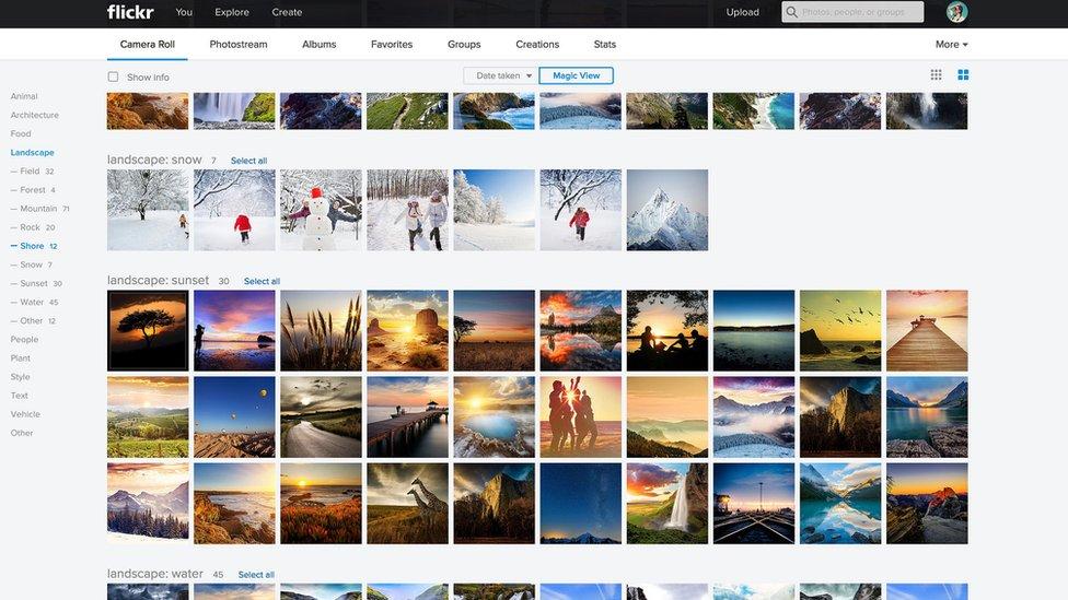 Flickr website
