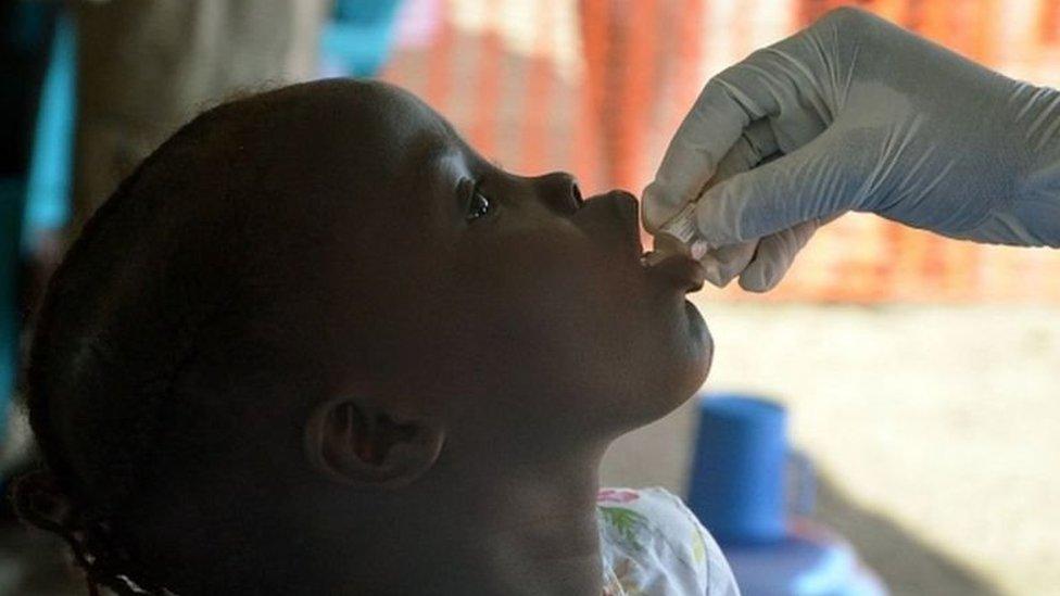 vacuna de cólera