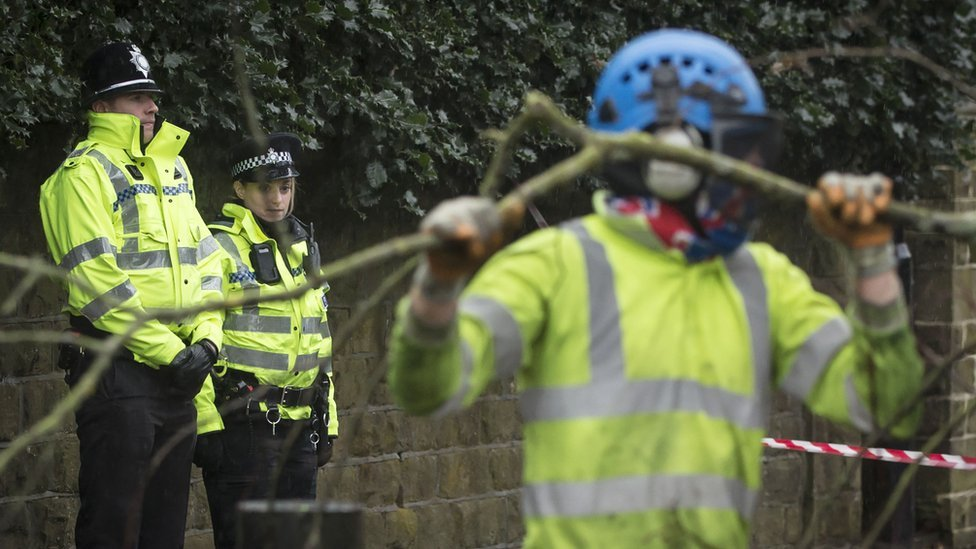 Police look on as contractors cut down a tree in Rustlings Road, Sheffield