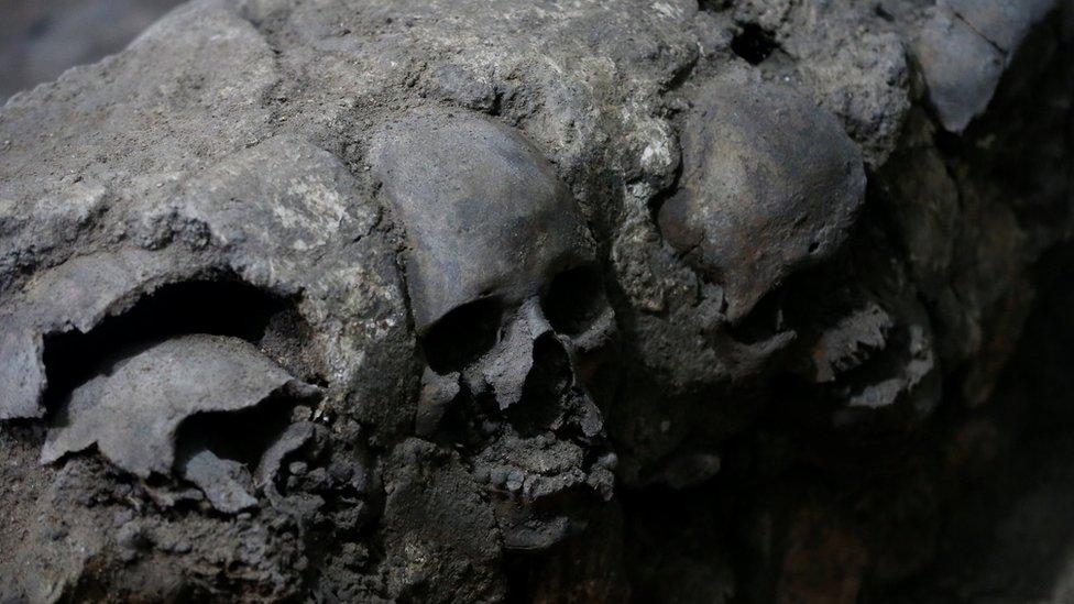 Skulls encased in lime piled neatly together