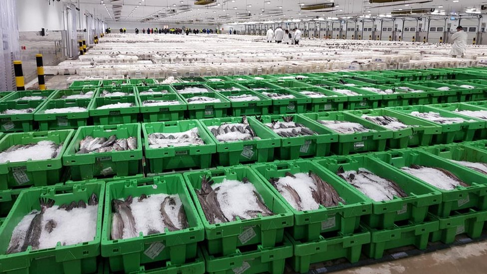 Brexit: Scottish fishing industry calls for clarity
