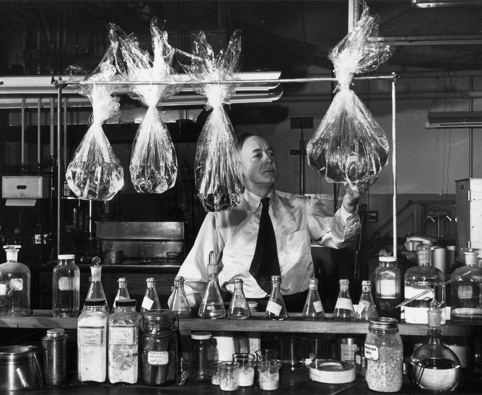 William Hale Charch demostrando cómo desarrolló un celofán a prueba de humedad en la década de 1920.