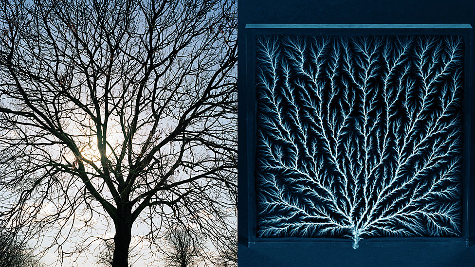A la izquierda, la silueta de un árbol. A la derecha, la figura de Lichtenberg