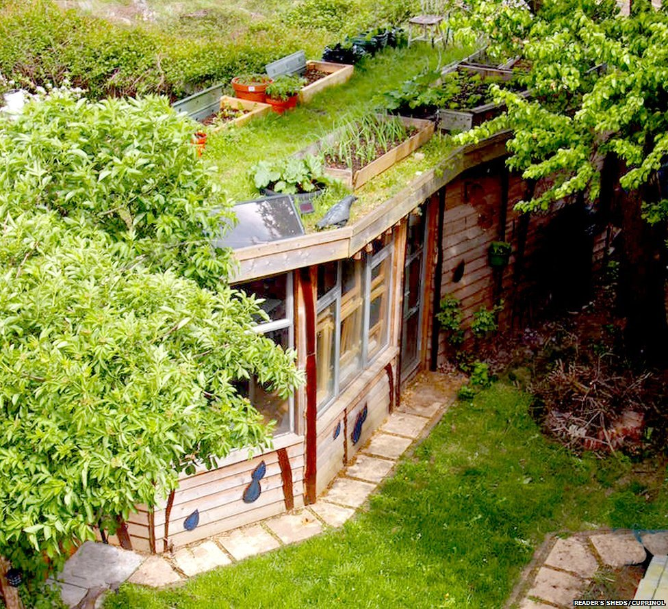 Allotment Roof Shed by Joel Bird