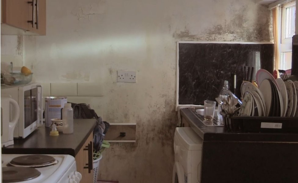 A kitchen with mould on the walls
