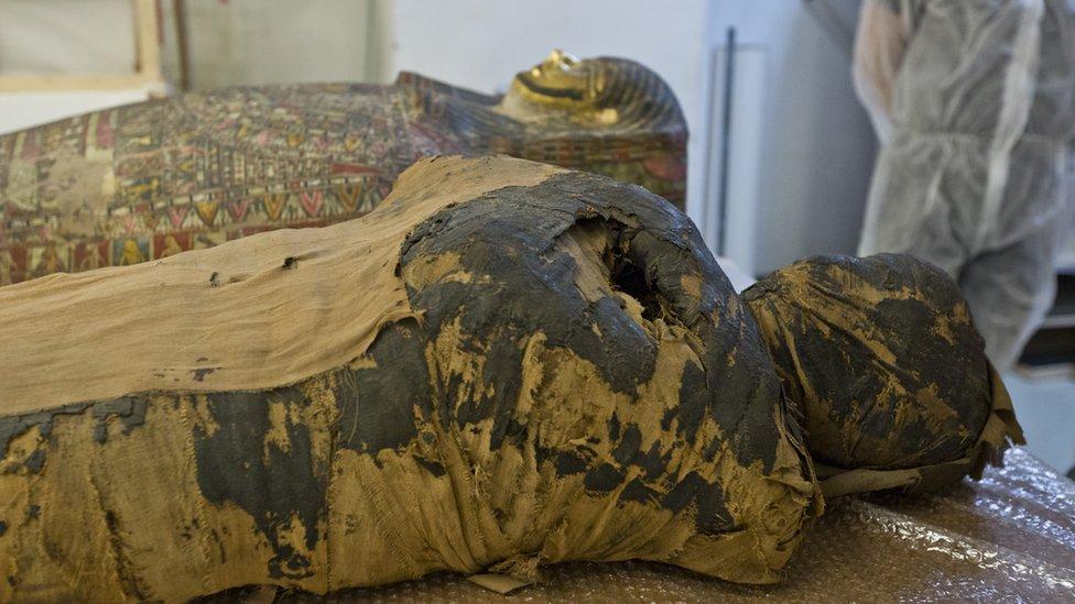 Imagen de la momia en su sarcófago.