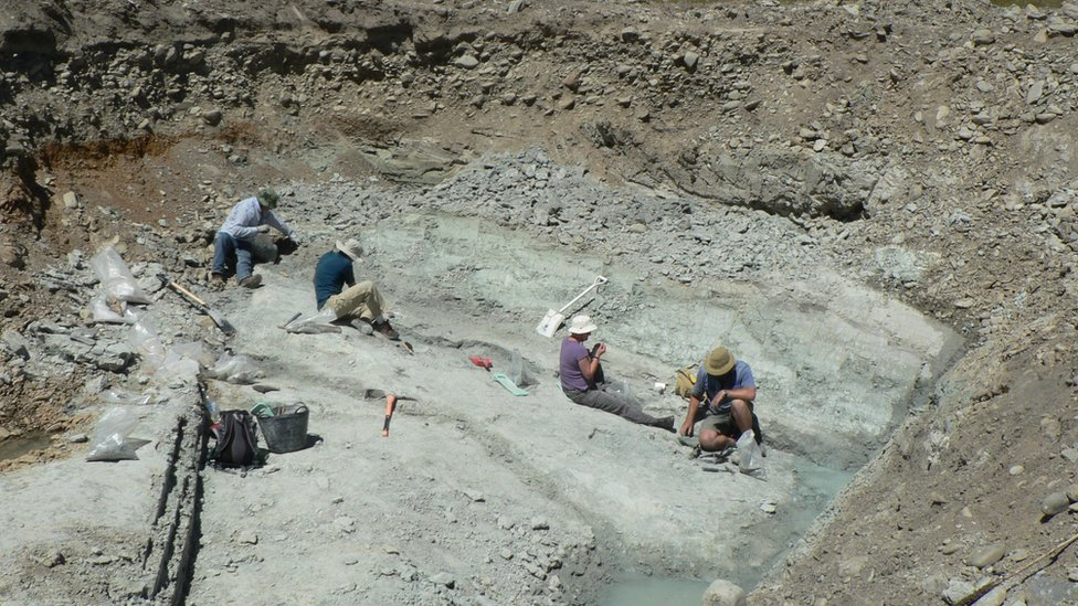 The fossil dig site at St Bathans in New Zealand where the fossilised remains of an extinct burrowing bat, Vulcanops jennyworthyae, were found.