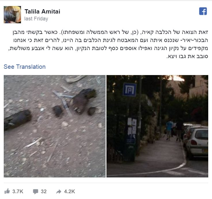 Talila Amitai Facebook post