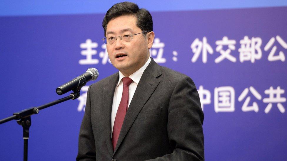 秦剛出席中國外交部主辦活動(中新社資料圖片)