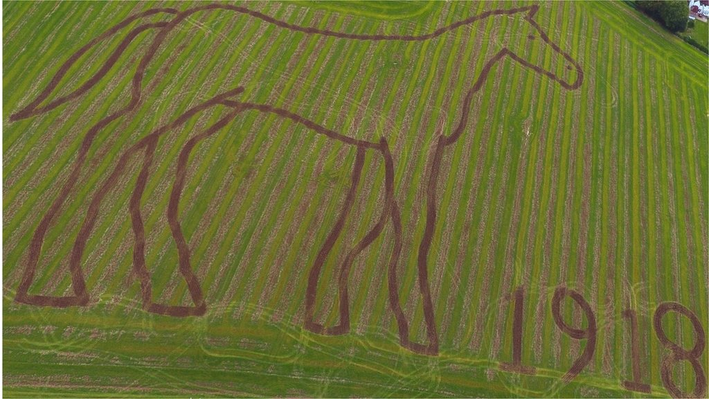 Giant horse etching in field marks World War One debt