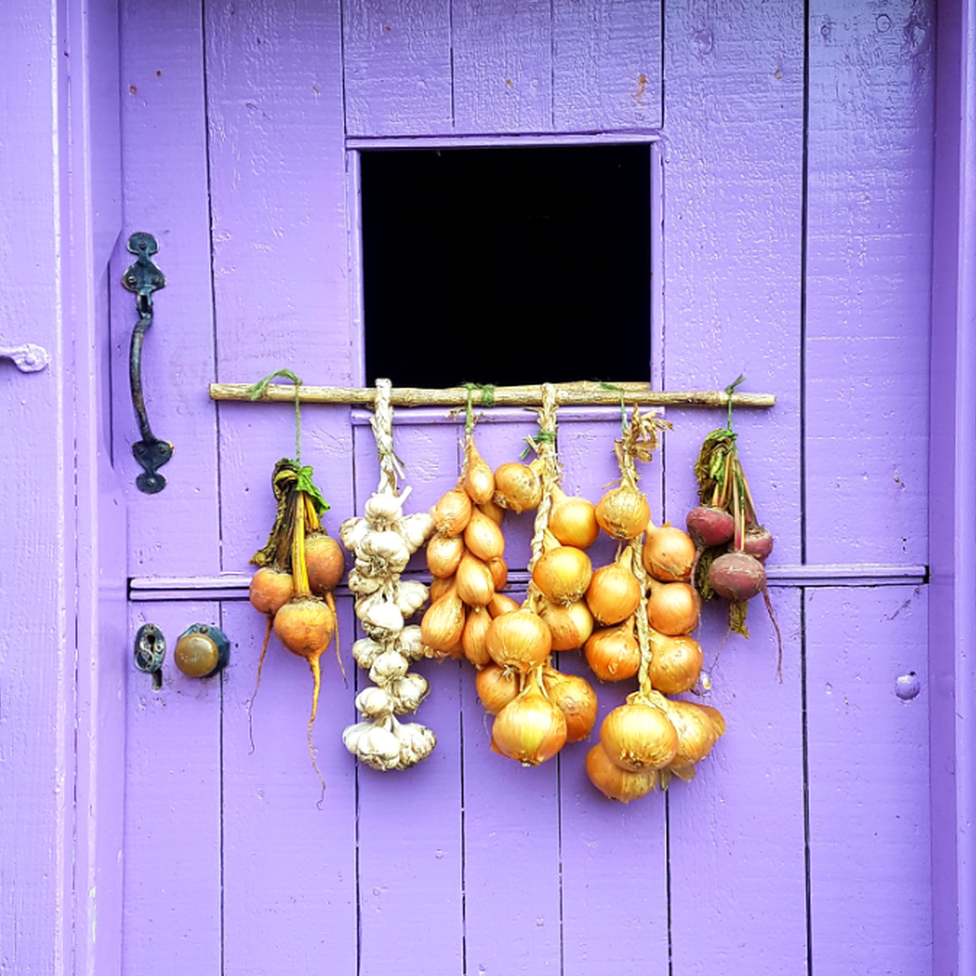 """These root vegetables had been left to dry across at greenhouse door at Inverewe Garden. """"The image and colours really caught my eye on what was a rather colourless day,"""" says Jane Sayliss."""