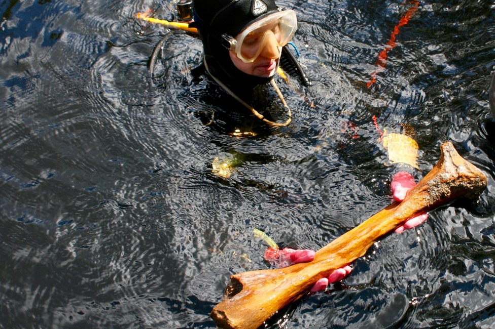 diver with a large animal bone