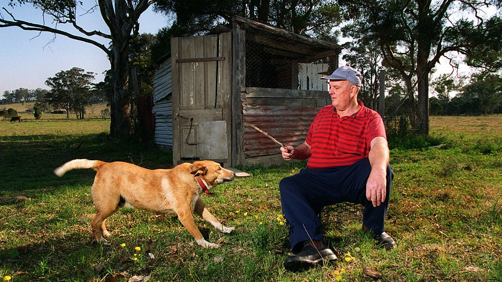 Sat outside by his chook shed, Les Murray is about to throw a stick for his dog