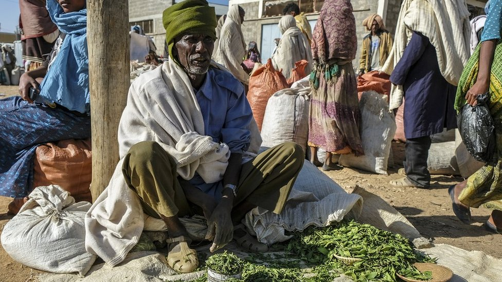 Masticar hojas de Khat causa efectos que algunos dicen son comparables a beber café fuerte.