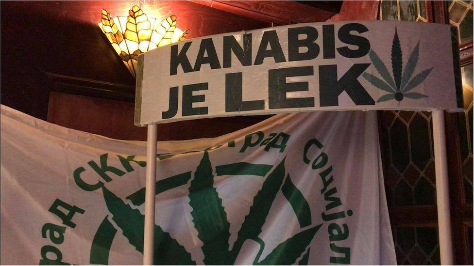 kanabis legalizacija u medicinske svrhe