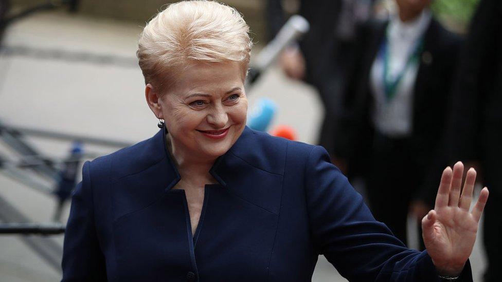 Після Далі Грибаускайте: хто очолить Литву і якою буде політика щодо України