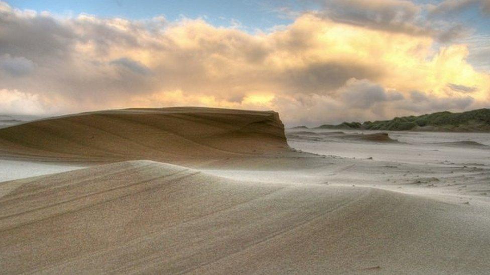 The Sands of Forvie