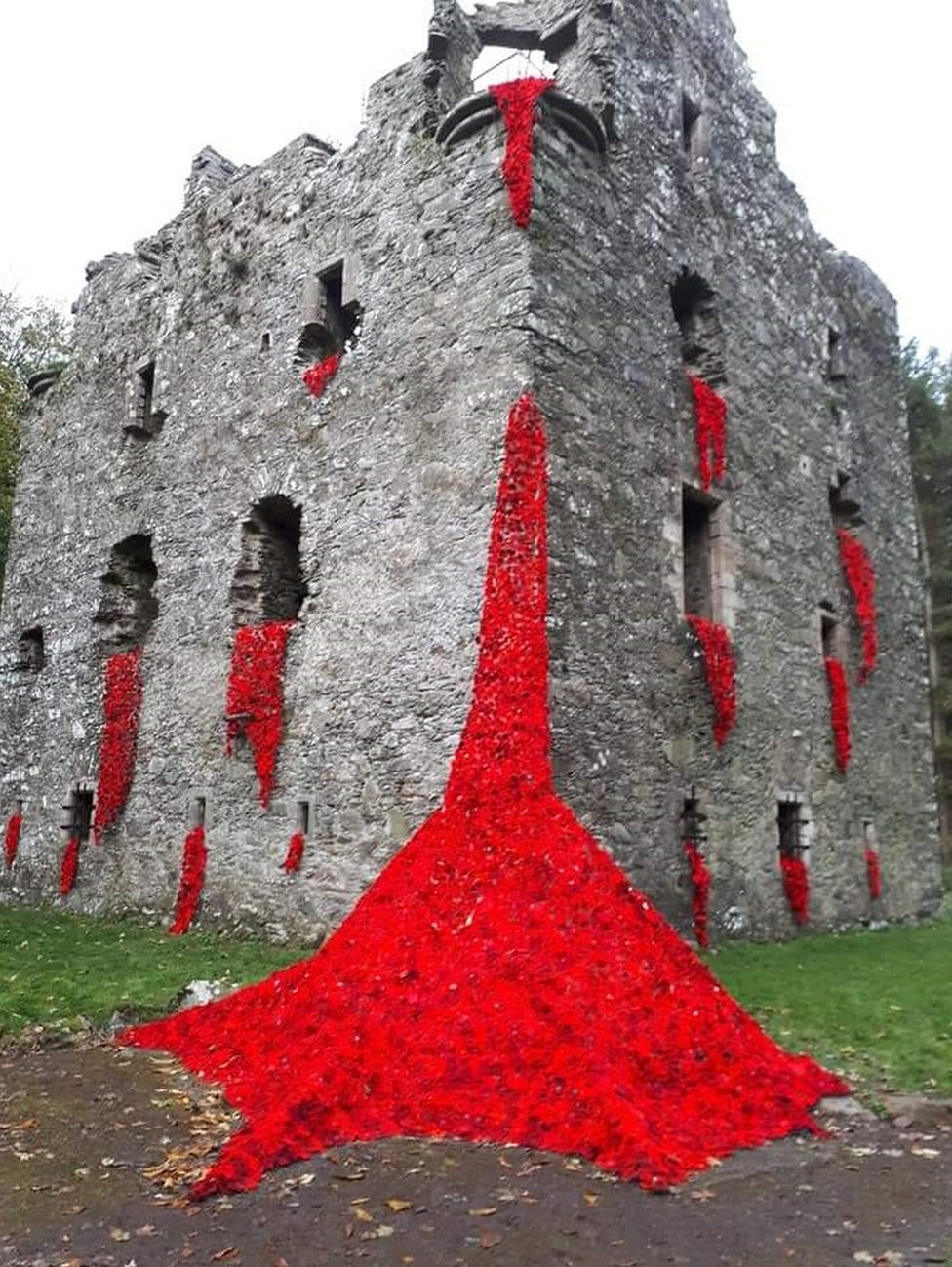 Poppies at Sorbie Tower
