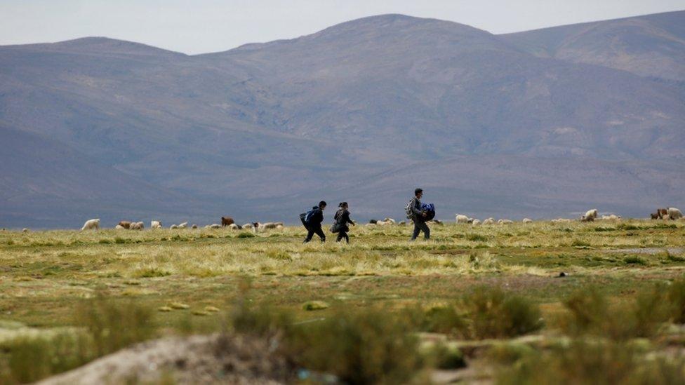 Migrantes venezolanos caminan por el desierto en el límite entre Bolivia y Chile.